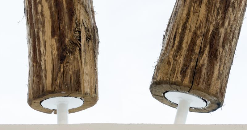 Das neue Lager von zieflekoch in Cresbach - Detail der statisch tragenden Eichenstämme © Bernhard Kahrmann für S+P